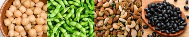 vegan-protein-banner